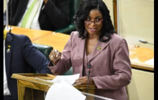 Dr Michelle Charles, member of parliament for St Thomas Eastern, makes her contribution to the State of the Constituency Debate in the House of Representatives on Wednesday.